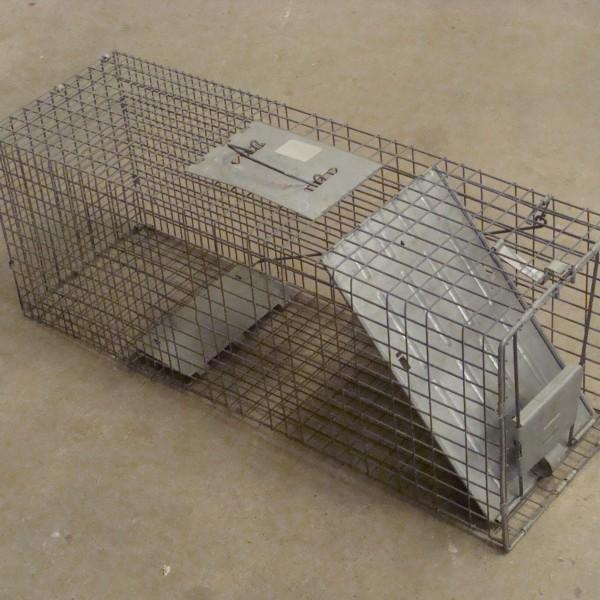 Trap, Havahart Cage (Large) Image